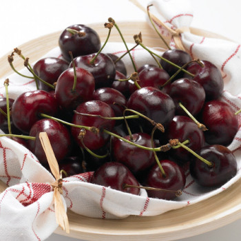 Cerisier Bigarreau Délice de Malicorne®