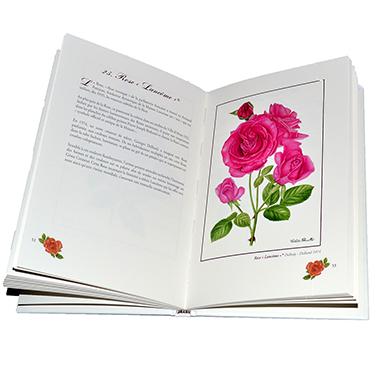 Livre A l´entour des Roses emblématiques d´hier et d´aujourd´hui