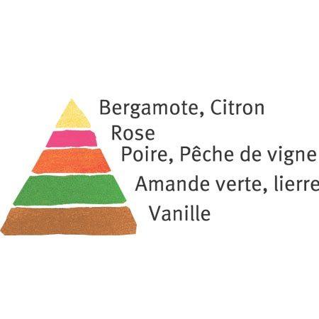 Rosier Claude Monet®