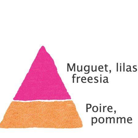 Rosier Jean-Pierre Foucault®