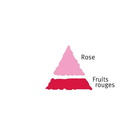 Rosier Ma Normandie®