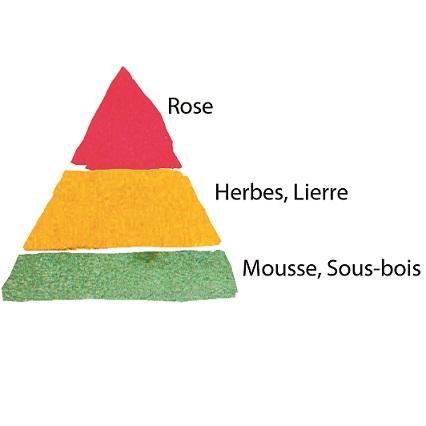 Rosier Amélie Nothomb®
