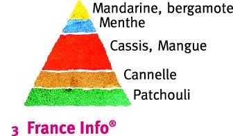 Rosier France Info®