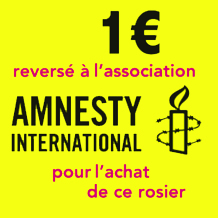Rosier Grimpant Amnesty International®