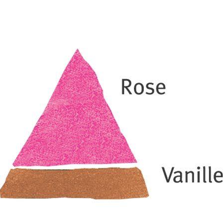 Rosier Le Rouge et Le Noir® Le rosier Tige