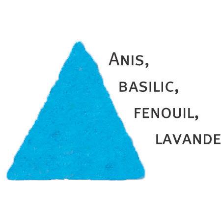 Rosier Soeur Emmanuelle®