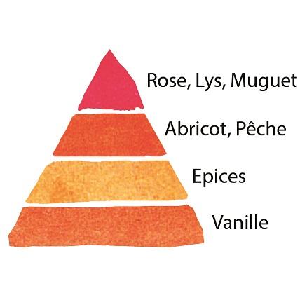 Rosier Château de Cheverny® Le rosier tige