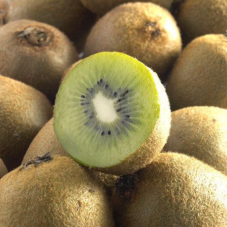 Kiwi Hayward variété femelle