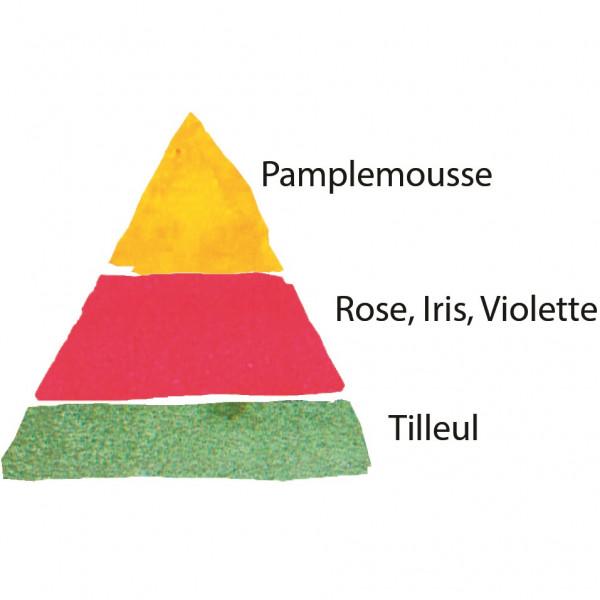 Rosier La Rose de Molinard® Le rosier tige