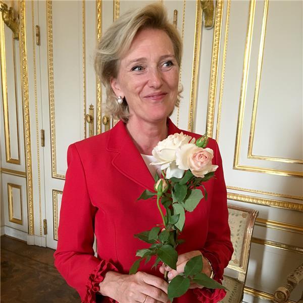 Rosier Princesse Astrid de Belgique®