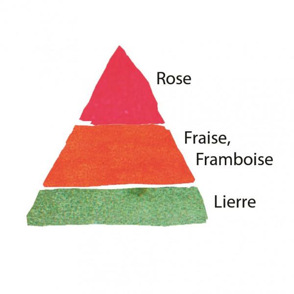 Rosier Rose Clos Vougeot®