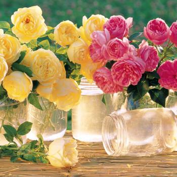Les souvenirs d'amour parfumés